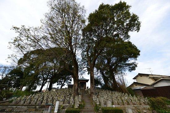 Tokoji Temple Five Hundred Arhats