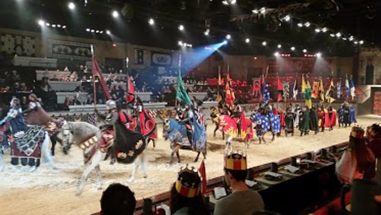 Medieval Times Maryland Castle: we had 2nd row seats. Upgraded tix get first row.