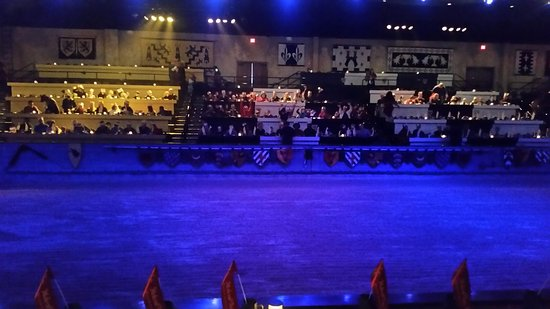 Medieval Times Maryland Castle: great arena, lights, smoke effects, etc. Loved the falcon flying around here at head level!