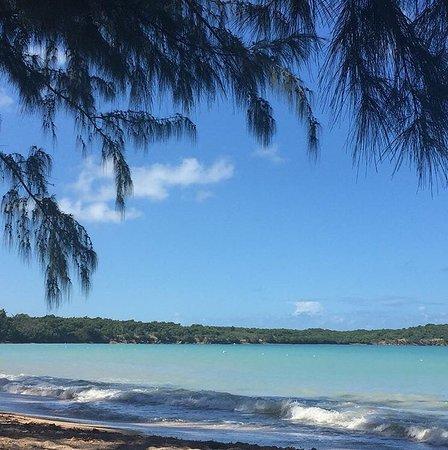Seven Seas Beach: photo0.jpg