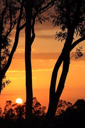 Windella, Australien: Sunrise the first morning!