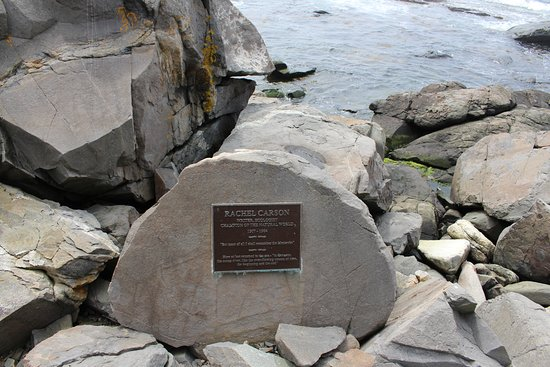 Newagen Seaside Inn: Rachel Carson Memorial Plaque