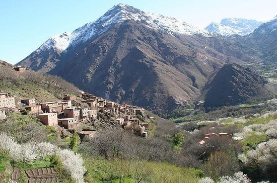 Private Day Tour: Berber Villages and...