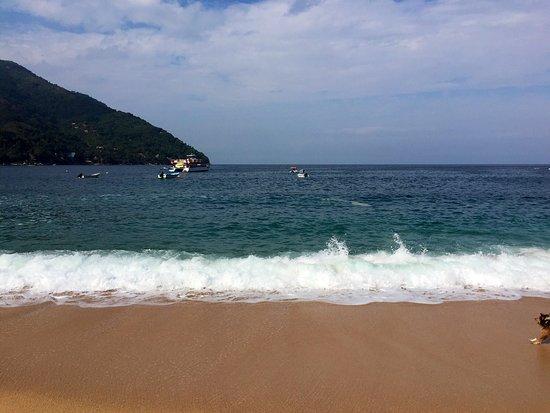 697bf091c6 Chicos Yelapa: Chicos es el Mejor lugar de la playa Se come delicioso y es