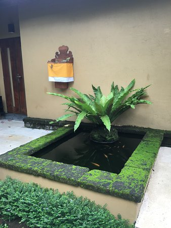 Komaneka at Monkey Forest: Lovely fish pond outside our door