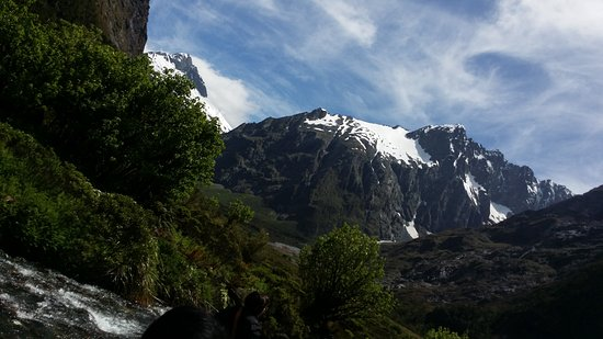 Queenstown, New Zealand: The Chasm and look - it's Australia's local bird!