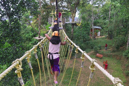 RockHill Adventure Park