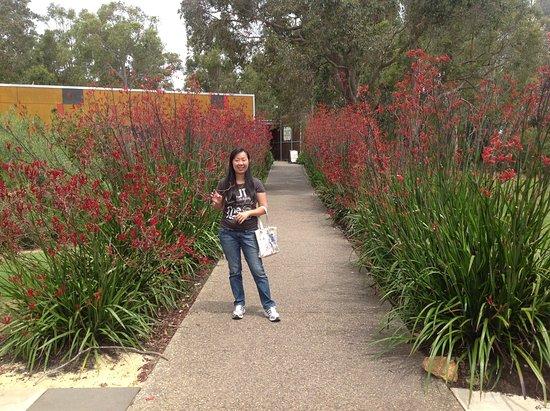 Metricup, Αυστραλία: Sad to leave