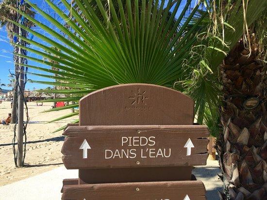 Les Prairies de la Mer: photo1.jpg