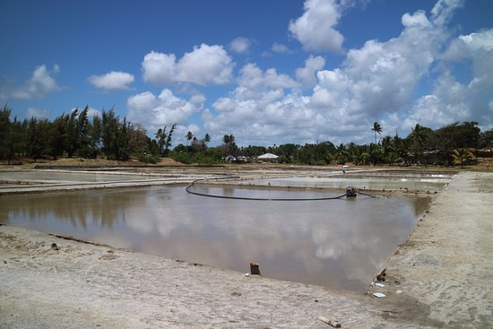 Остров Пемба, Танзания: Salt Factory near the ruins
