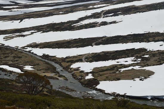 Kosciuszko National Park, ออสเตรเลีย: It's almost summer..