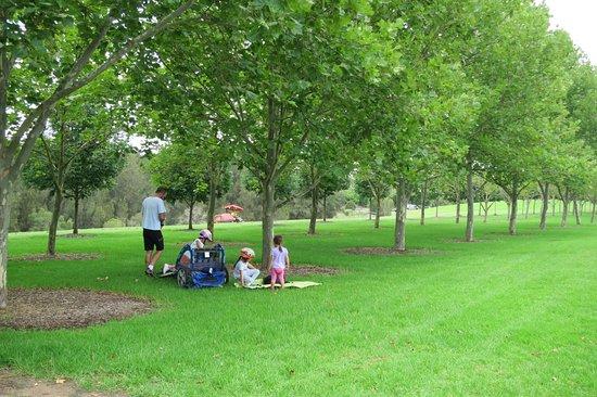 Bicentennial Park Sydney Olympic Australia Top Tips