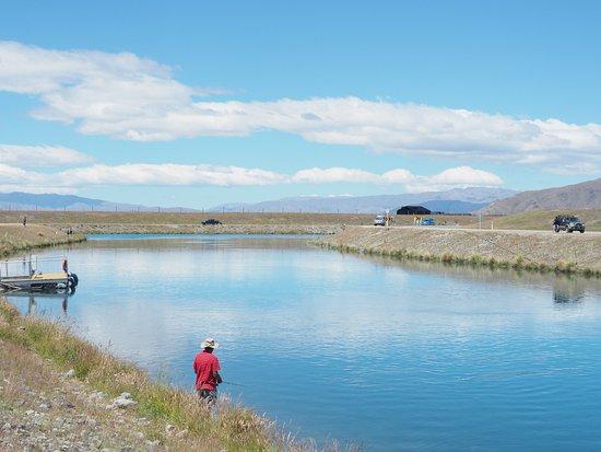 Twizel, Nowa Zelandia: 鮭を釣っている人