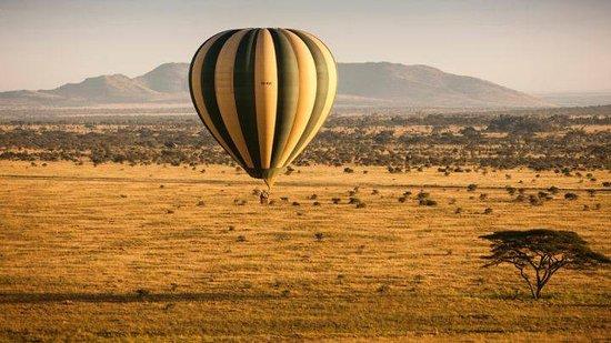 Tamaqua, Pensilvanya: Serengeti Baloon Safari