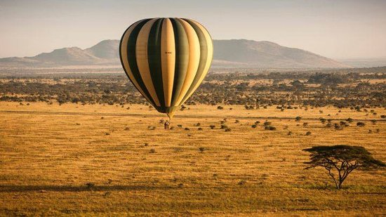 Tamaqua, Πενσυλβάνια: Serengeti Baloon Safari
