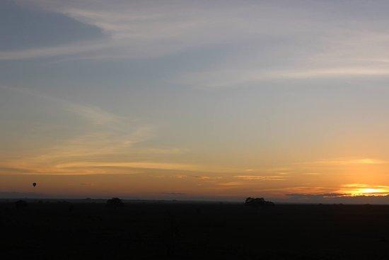 Tamaqua, PA: Serengeti Baloon Safari