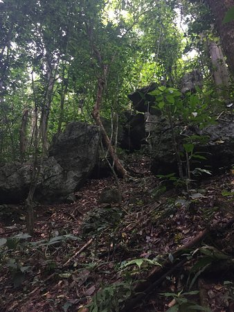 Comerio, Puerto Rico: photo1.jpg