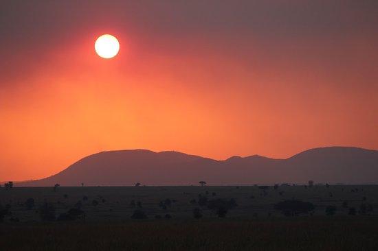 Tamaqua, Πενσυλβάνια: Serengeti sunset!
