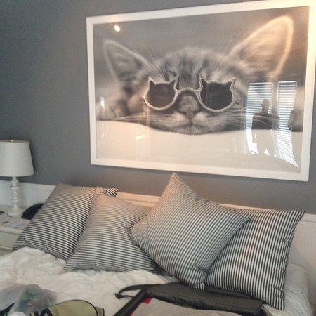 Zdjęcie Alexander's Guesthouse