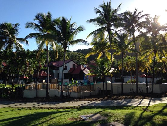 Reviews For Renaissance St Croix Carambola Beach Resort Spa