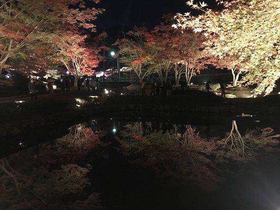 Sogi Park : photo0.jpg