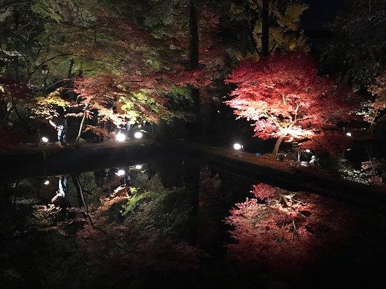 Toki, Japonia: photo1.jpg