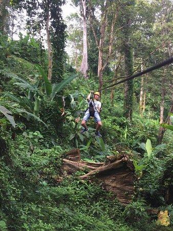 Cable Jungle Adventure