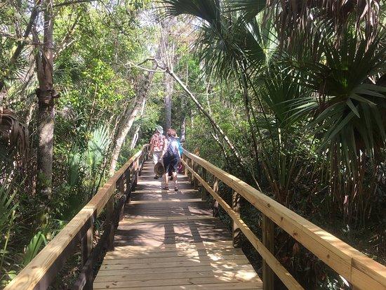 Copeland, FL: photo1.jpg