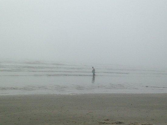 Beachcomber: Less than a block from the beach