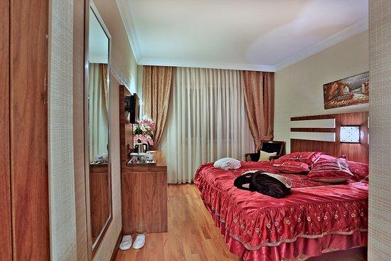 Aspen Hotel Ist : DOUBLE ROOM