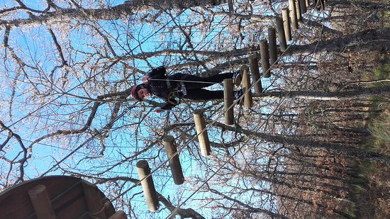 Cervera de Pisuerga, Spain: El Robledal del Oso - Parque de aventuras