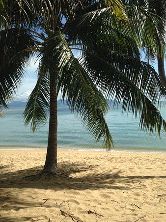 Mae Nam Resort Photo
