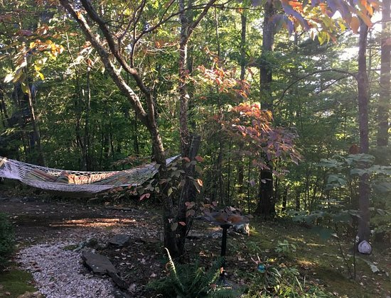 Crooked Oak Mountain Inn: A hammock on the grounds of the B&B