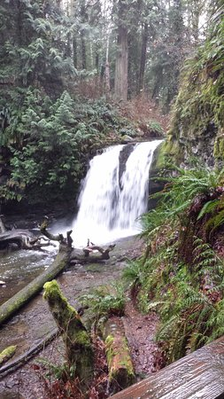 Ladysmith, Canada: Stocking Creek Waterfalls