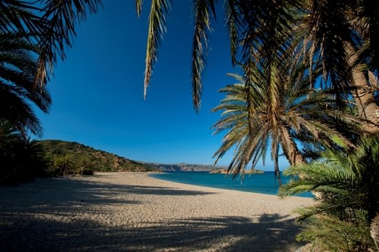 Vai Palmeto Creta Grecia Picture Of Vai Beach Vai