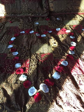 Donna's Premier Lodging: Rose Petals on our bed