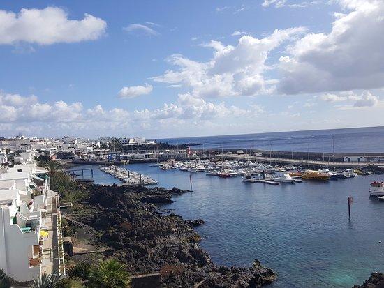 Euphorbia picture of walk from puerto del carmen to puerto calero puerto del carmen tripadvisor - Lanzarote walks from puerto del carmen ...