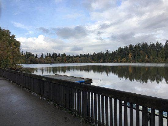 how to go to stanley park from downtown