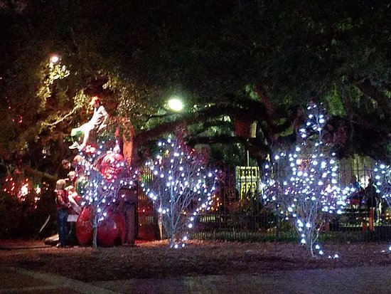 Photo4 Picture Of New Orleans City Park New Orleans  - New Orleans Christmas Lights