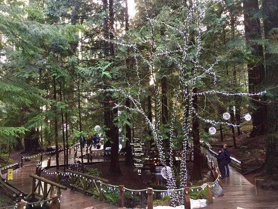 North Vancouver, Kanada: Christmas lights!
