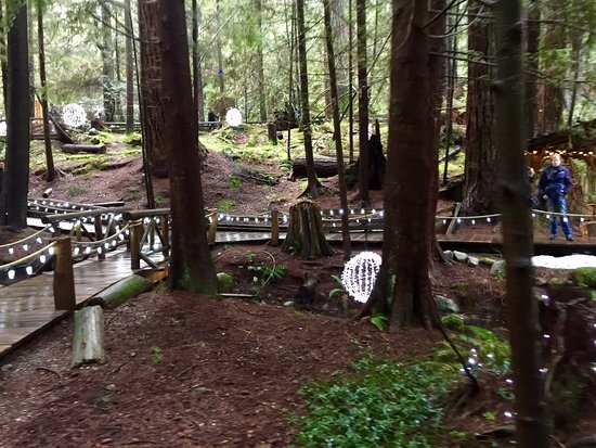 North Vancouver, Kanada: In the middle of the forest