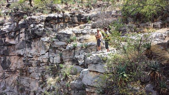 Oshikoto Region, Namibia: con amigos en el lugar
