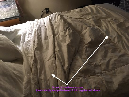 Hilton San Francisco Financial District Not Clean Duvet Does Come With A Cover
