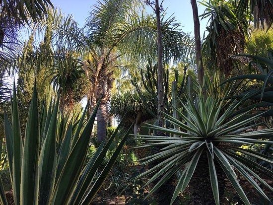 Le Jardin des Douars : photo2.jpg