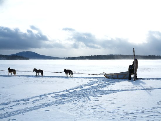 Newry, ME: Dog sledding on the lake