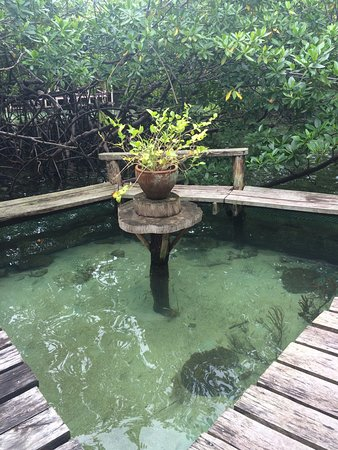 Isla Popa Image