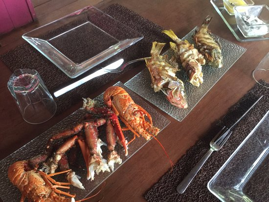 Isla Popa, Panama: Fresh catch from our snorkeling and spear fishing adventure.