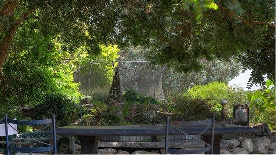 คิงส์คอต, ออสเตรเลีย: One of the outdoor settings in the beautiful garden