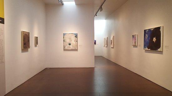 Georgia O'Keeffe Museum: 20170104_100749_large.jpg