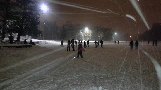 Bowness Park : Winter skating shot in the snow